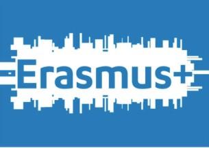 Erasmus 305x216